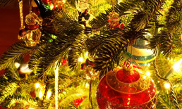 The Best Advice So Far: tradition - ornaments on Christmas tree