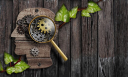 Flat rustic wooden head shape on rustic boards. A living vine with heart-shaped leaves runs underneath, and a magnifying glass highlights gears in the brain area.